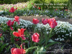 Behold Your Life is Blooming