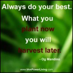 PlantNowrRflatJ