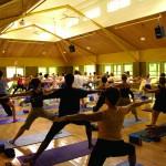 Omega Institute - Yoga