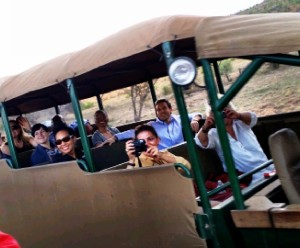 Young Global Leaders at Pilanesburg Game Reserve