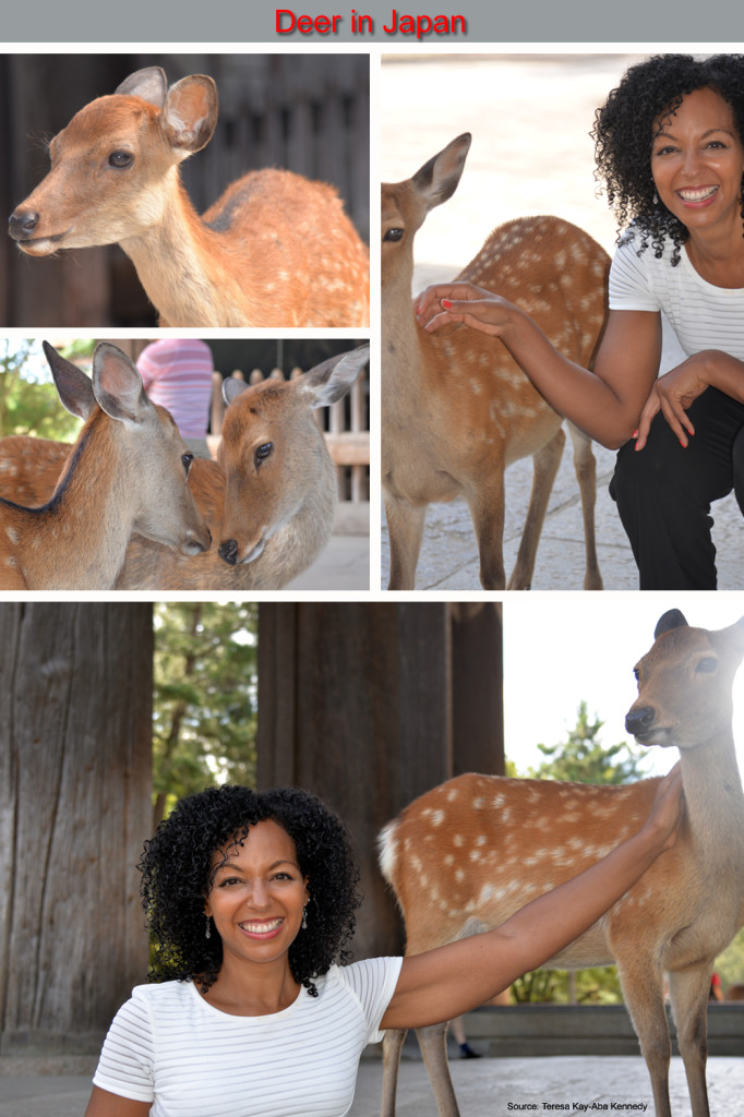 Teresa Kay-Aba Kennedy playing with Deer in Japan
