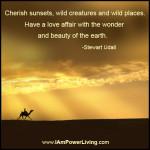StewartUdall_WonderFJ