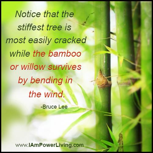 BruceLee_Bamboo_PowerLiving_TeresaKennedy_QuoteCardFJ