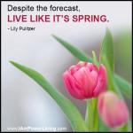 LilyPulitzer_Spring_PowerLivingFJ