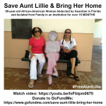 SaveAuntLillie_December102017FJ