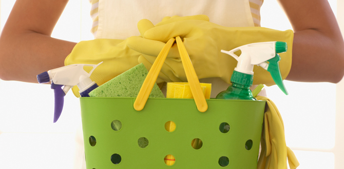 0314-Feature-Spring-Cleaning-WP